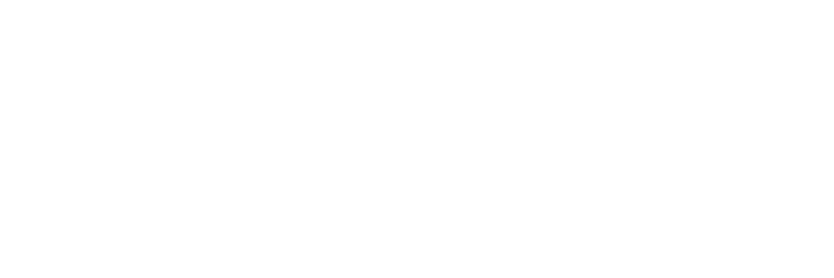 Dumb Game Company